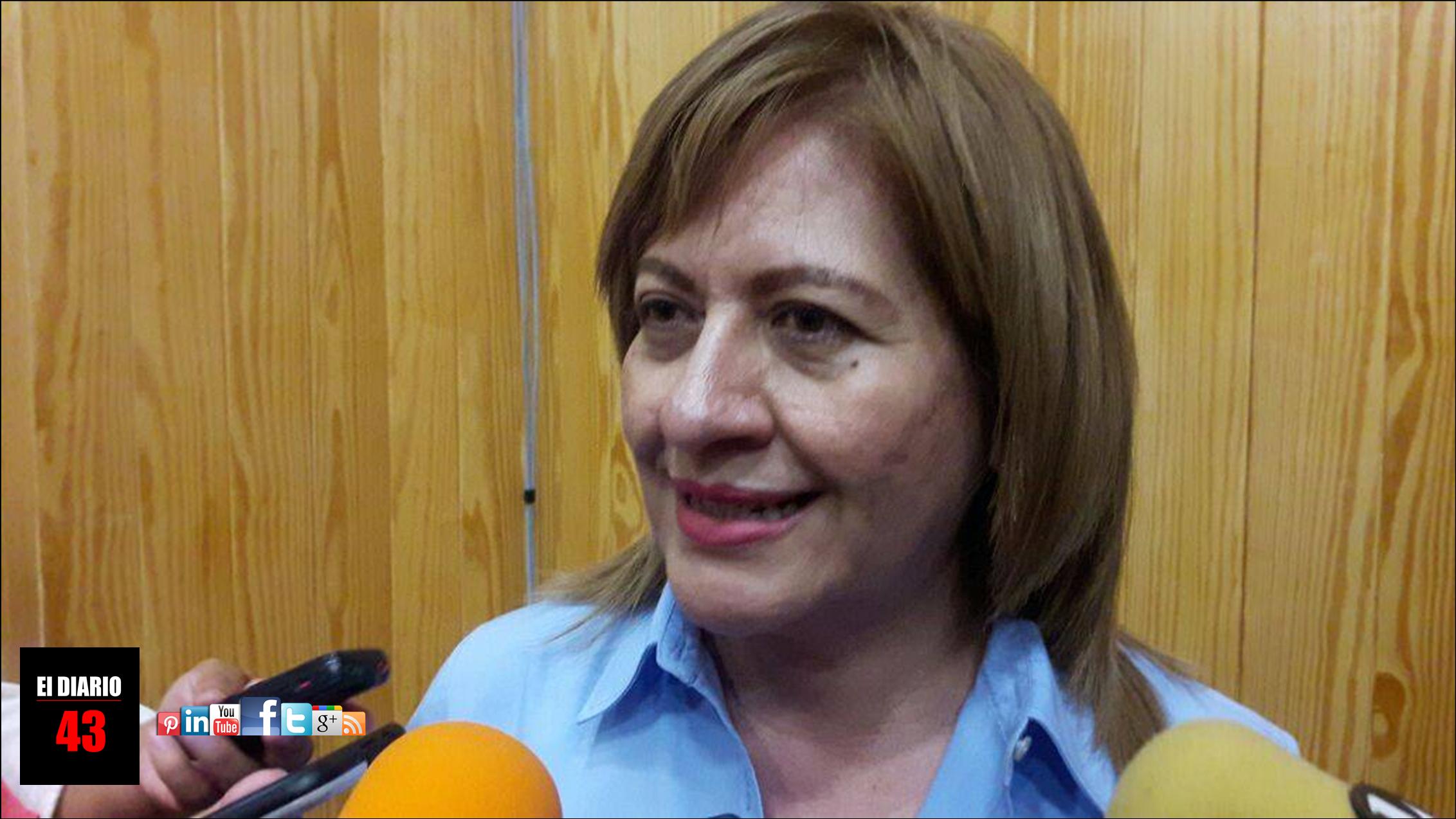 """Multas severas para violadores"": Diputada Juanita Sánchez"