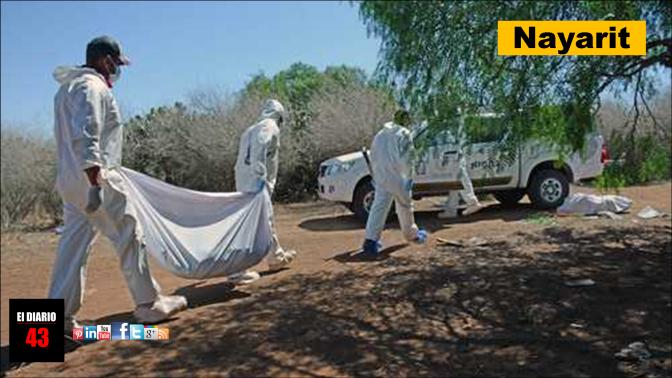 Hallan siete cuerpos en fosa clandestina de Nayarit