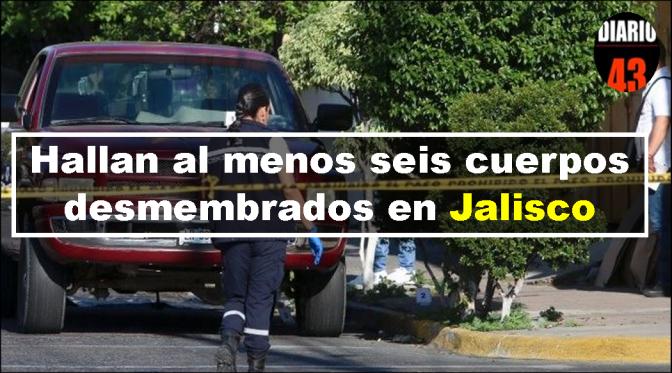 Hallan al menos seis cuerpos desmembrados en Jalisco