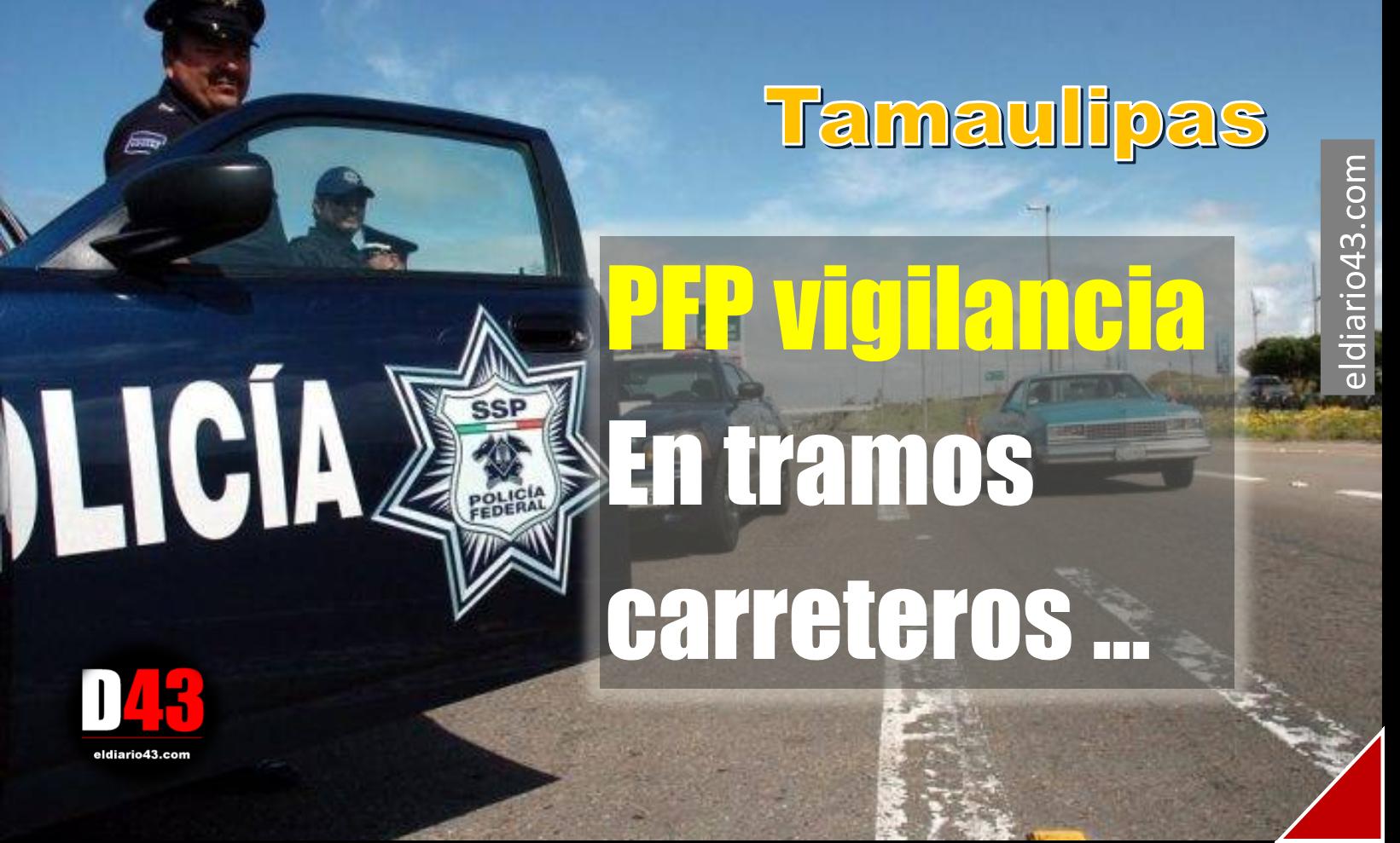 PFP vigilancia en tramos carreteros de San Fernando y Ribereña