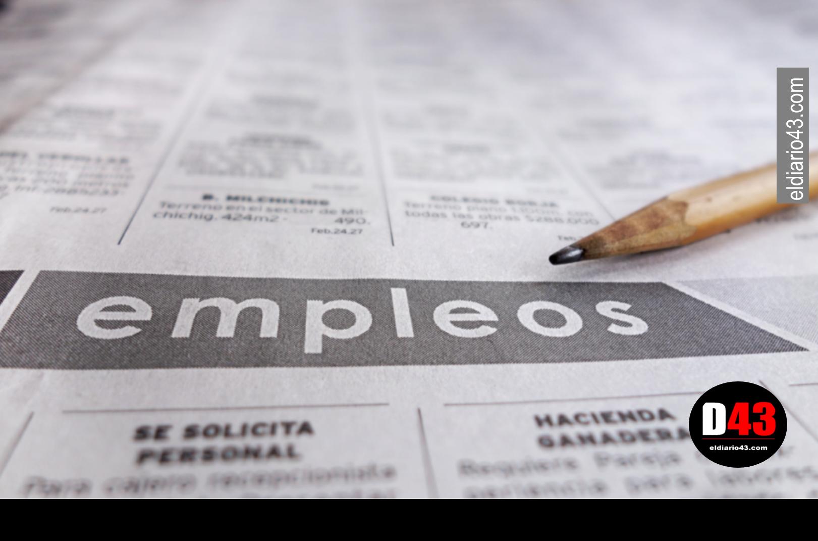 Creación de empleo formal se desploma 88% en mayo…