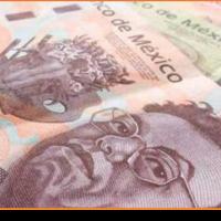 La mitad de asalariados mexicanos no puede mantener a su familia: ONG