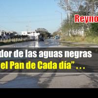 Cansados del hedor de las aguas negras en Reynosa